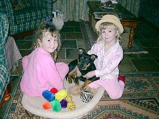 Noonbarra Kelpie as a pet for children: Noonbarra Maggie and Breanna and Corrine